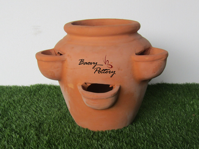Strawberry Terracotta Pots